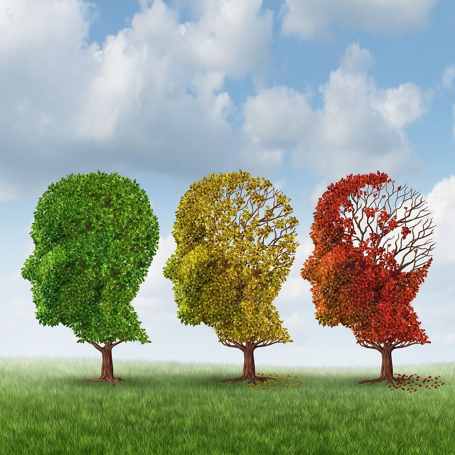 Cognitive Decline: What Causes it in the Elderly?
